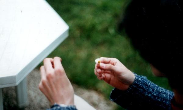 2002-Vincent_2.jpg